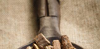 radacina de lemn